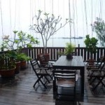 Garden & Dining Area