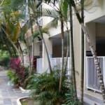 Sunshine @ Bayu Emas Apartment Garden